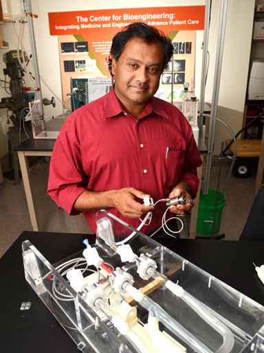 Robin Shandas, chair of bioengineering department
