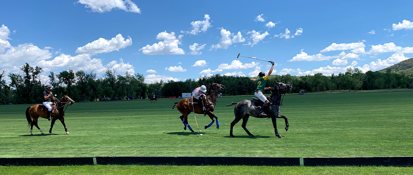 Polo match at Mallets for Melanoma