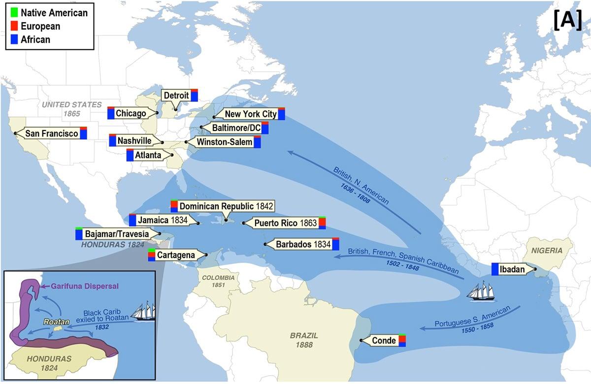 Migration of the African diaspora