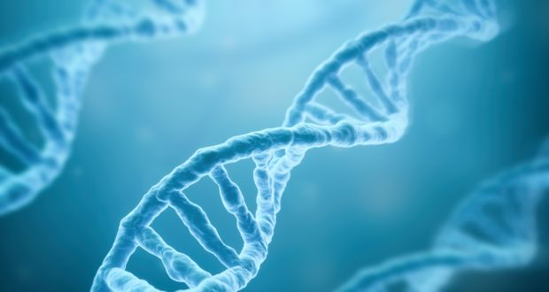 Image result for genome
